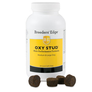Breeders' Edge Oxy Stud