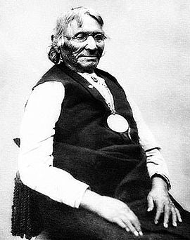 Chief Ten Bears, Yamparika Comanche
