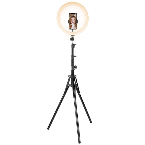 "Image of Cygnett 12"" Ring Light with Charge Up Boost 5k Powerbank CY3544VCSLR"