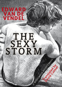 The Sexy Storm by Edward van de Vendel