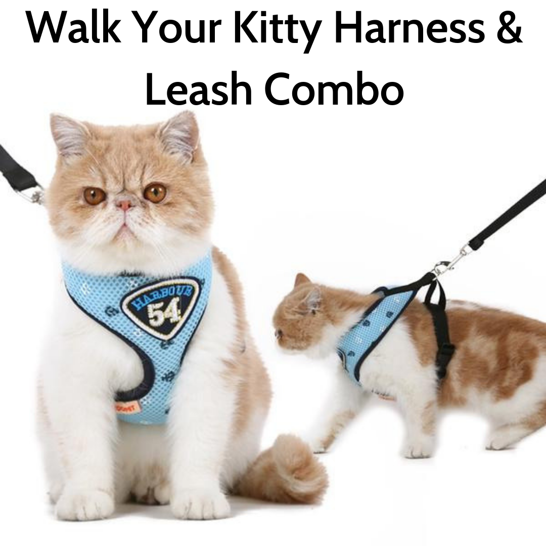 Walk Your Kitty Harness and Leash Combo - The Creature Getup