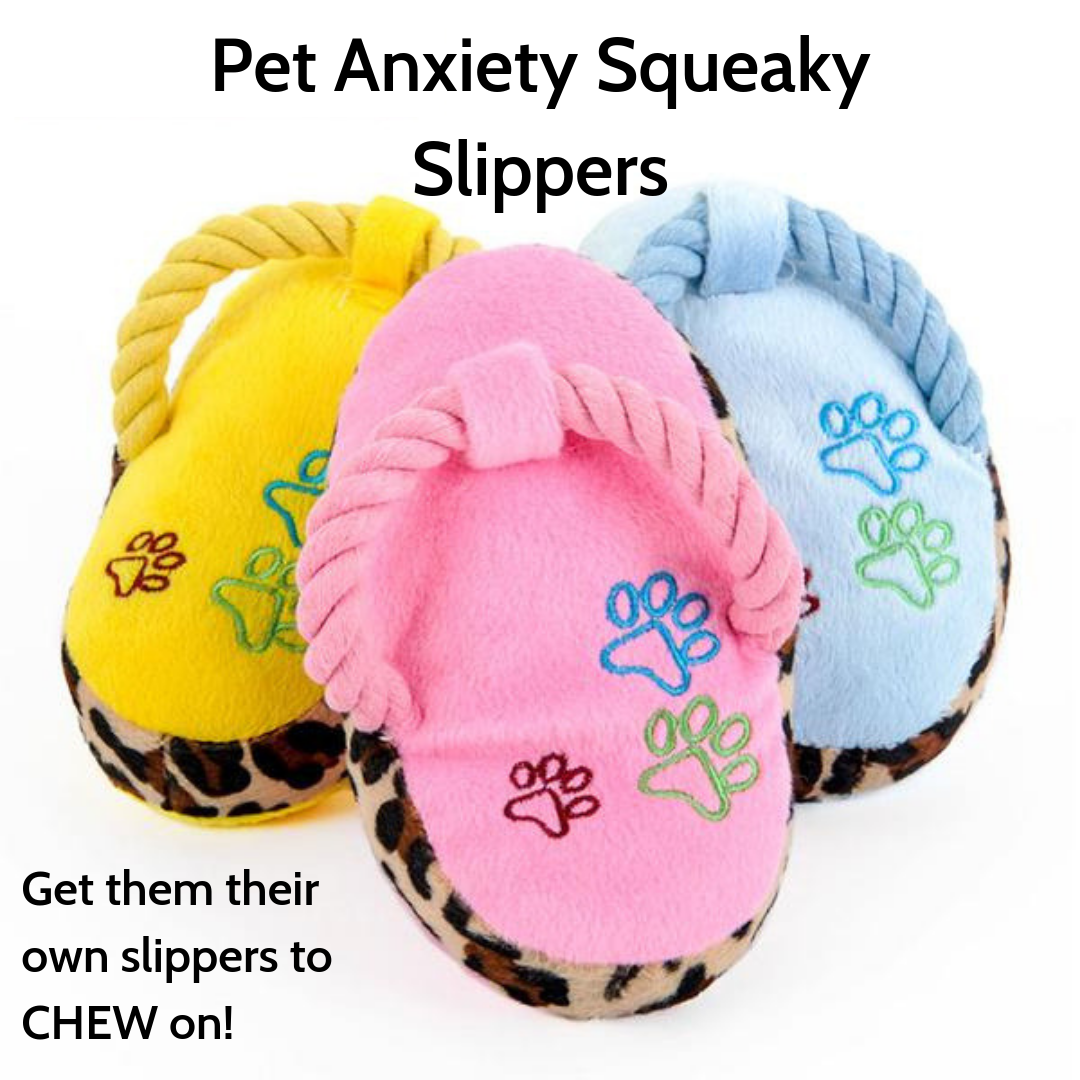 Pet Anxiety Squeaky Slipper Chew Toy - The Creature Getup