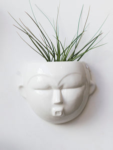 Face pot wall