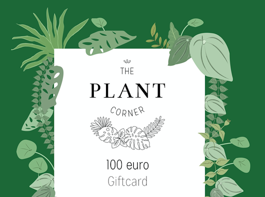 Giftcard 100 euro