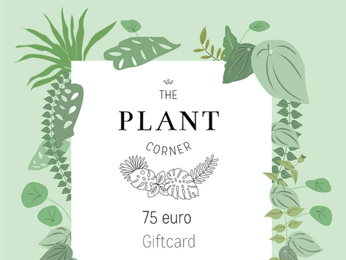 Giftcard 75 euro