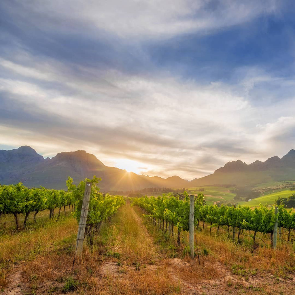 Learn about Stellenbosch, South Africa on The Folklore