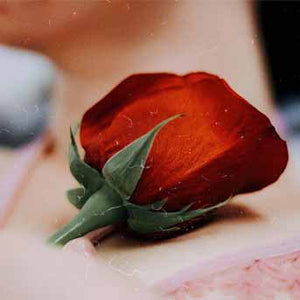 8 Benefits Of Rose Petal Powder For Skin