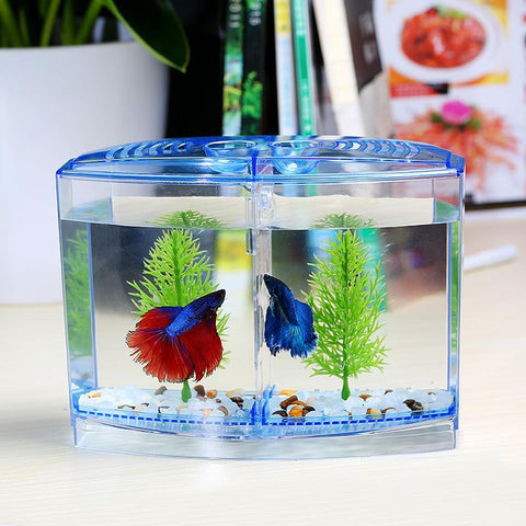 Blue / M - Double Betta Fish Tank