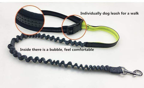 handsfree dog leash Handsfree Bungee Dog Leash