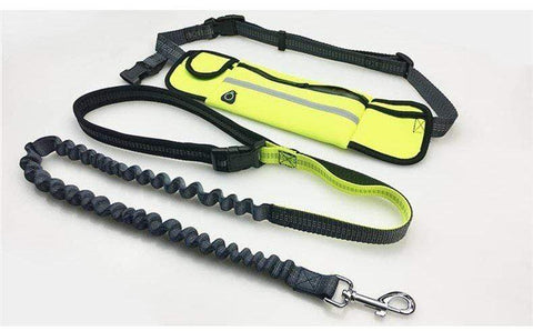 Image of handsfree dog leash Handsfree Bungee Dog Leash