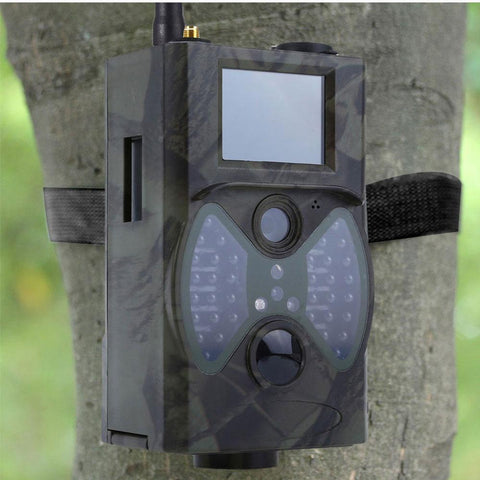 Image of Hunting Deer Trail Camera