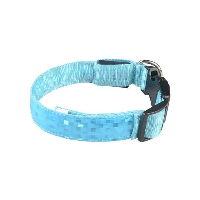 LED Dog Safety Collar Blue / 2.5 x 45-52cm LED Dog Safety Collar