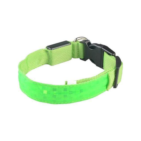 Image of LED Dog Safety Collar Green / 2.5 x 45-52cm LED Dog Safety Collar