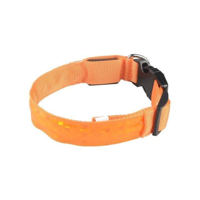LED Dog Safety Collar Orange / 2.5 x 45-52cm LED Dog Safety Collar