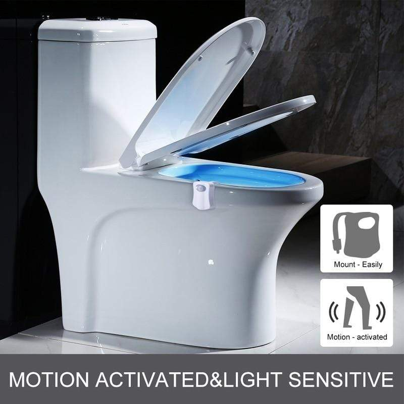 Toilet seat night light International Toilet Seat LED Night Lights