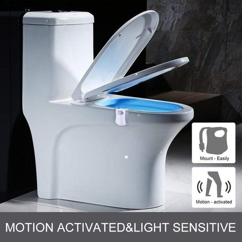 Image of Toilet seat night light International Toilet Seat LED Night Lights