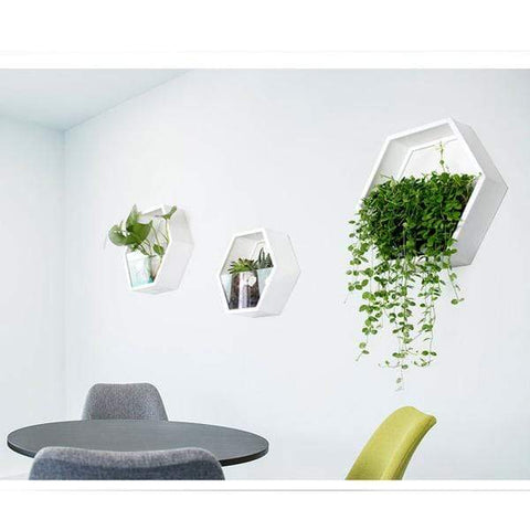Image of Wall Plant Fish Flower Pot Vase White S Wall Fish Tank Modern Hanging Plant Vase