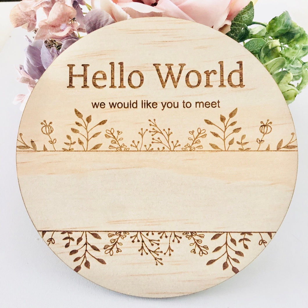 HELLO WORLD- WE WOULD LIKE YOU TO MEET | Announcement Disc