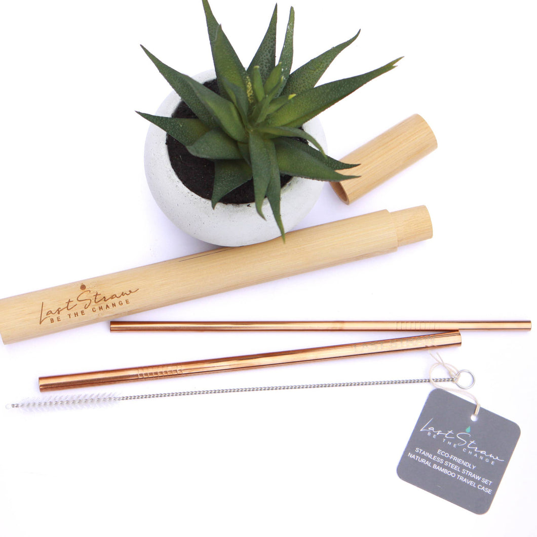 Good Human Straw Set with Bamboo Case - Rose Gold