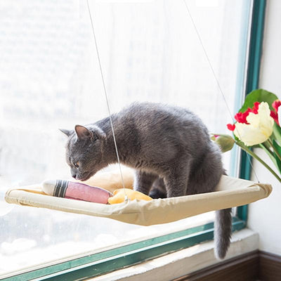 Window Cat Bed -