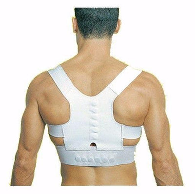 Spinal Support Brace - White / L