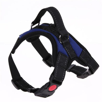 Adjustable Dog Vest Harness - Blue / S