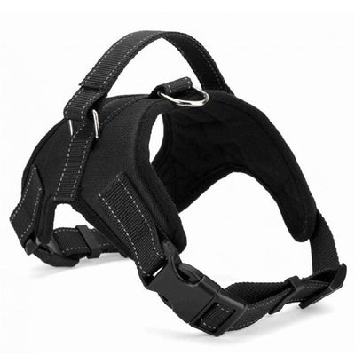 Pet Dog Seat Harness - Black / S
