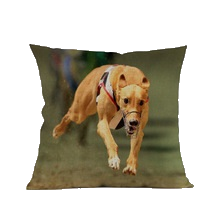 3 SIZES - Greyhound Throw Pillow Design 4