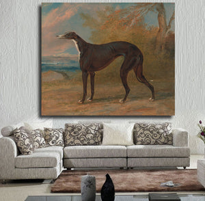 Modern Art Greyhound Printed on Canvas