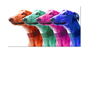 4 Color Greyhound Print