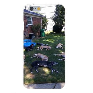 Greyhounds Sleeping Silicone iPhone Cover
