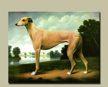 Reflecting Greyhound Print