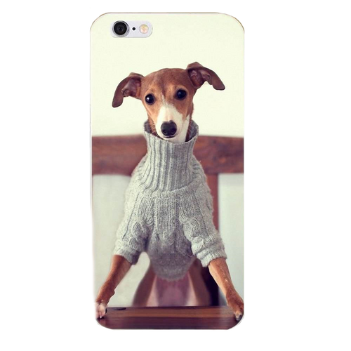 Dressed Up Iggy Silicone iPhone Cover