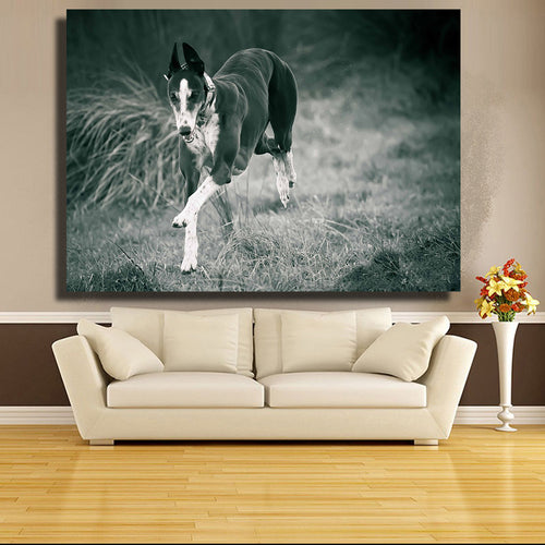 Running Greyhound Print