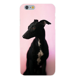 Greyhound Silicone iPhone Case with Pink Background