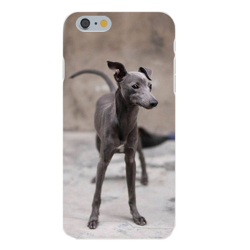 Greyhound Puppy Silicone iPhone Cover