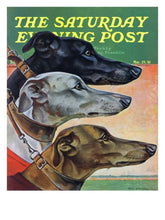 """Greyhounds"" Saturday Evening Post Cover Large Print"