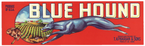 Original Vintage Label For Blue Hound Fruit Cake