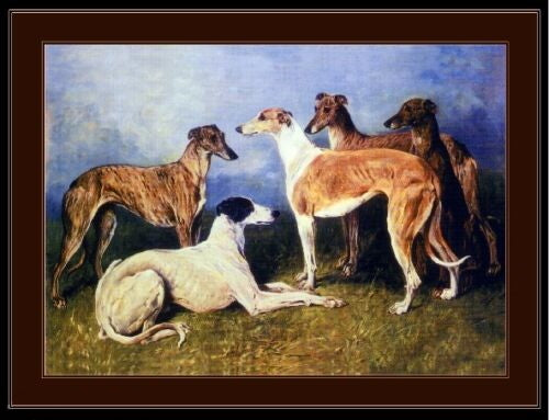 English Greyhounds Print