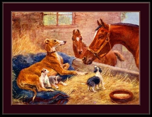 English Greyhounds With Horses Print