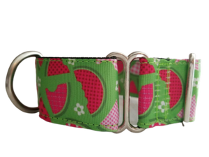 Watermelon Martingale Collar