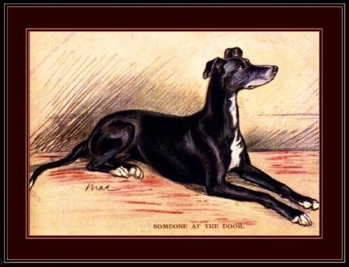 English Greyhound Print