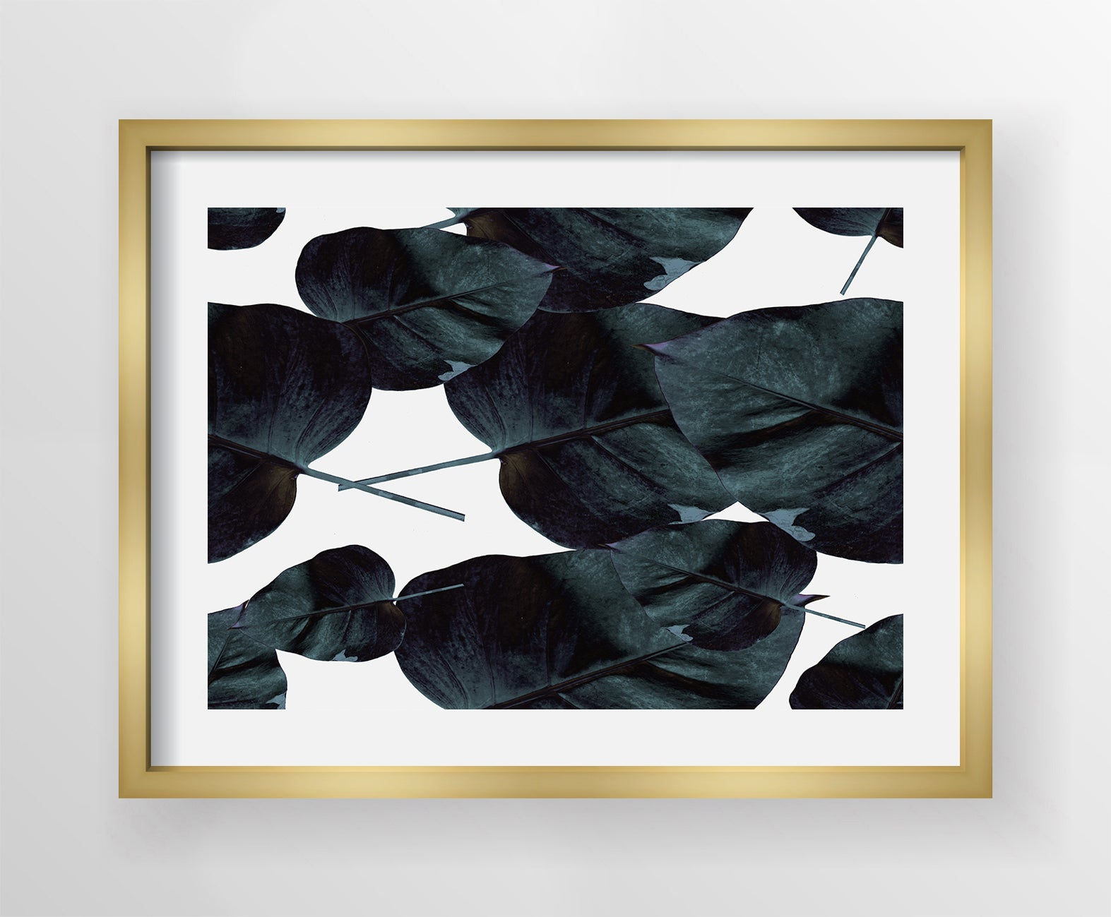 Black Lily Canvas
