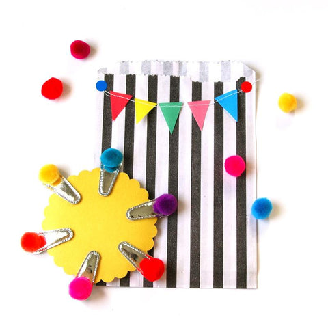 Rainbow Pack of Pompom Clips