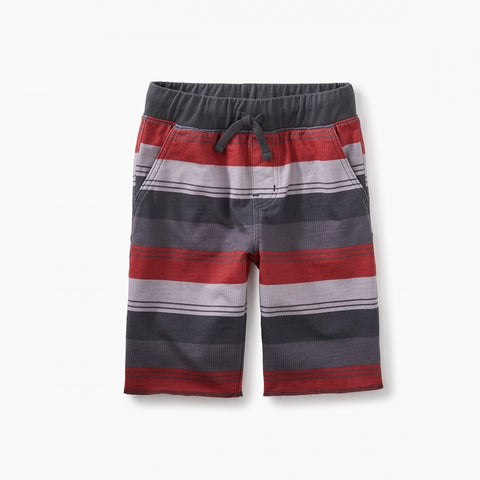 Print Cruiser Shorts - Coal Tri-Stripe