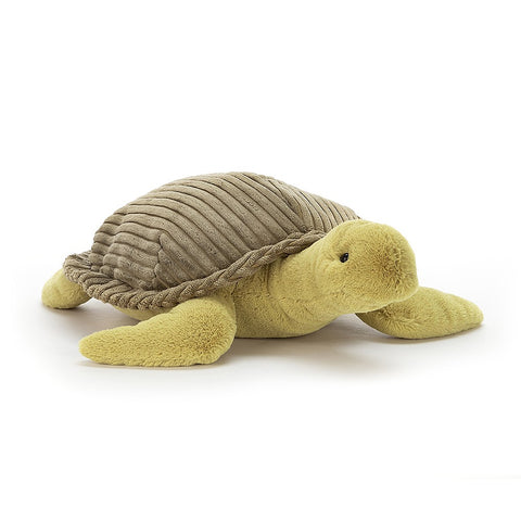 Terence Turtle