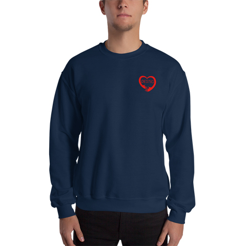 Small Destig Logo Sweatshirt