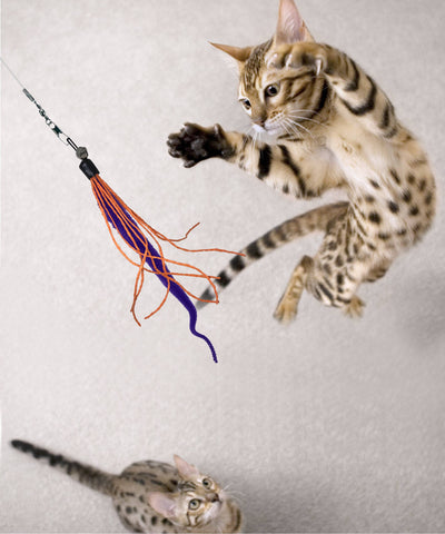 Dezi & Roo Wiggly Wand Worm Cat Toy