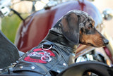 Biker Dawg Motorcycle Jacket - Black