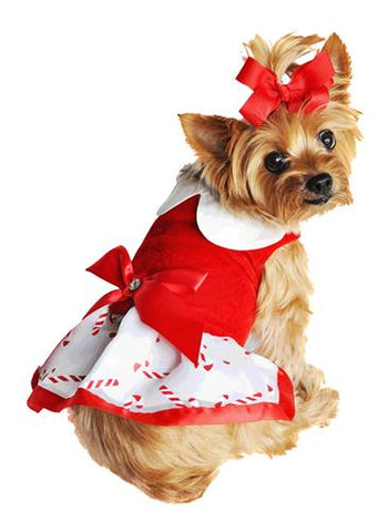 Christmas Candy Cane Rhinestone Dress with D Ring and Leash